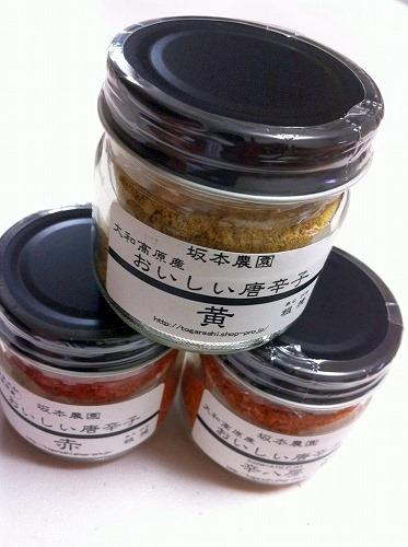 s-sakamoto1.jpg