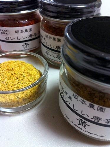 s-sakamoto4.jpg